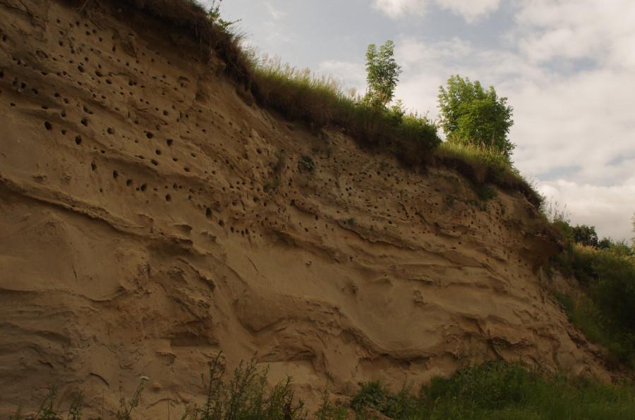 Sandgrube_web